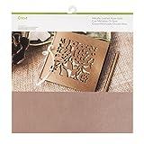 Cricut Paper & Cardstock Muster, 30,5 x 30,5 cm, schimmerndes Papier –...