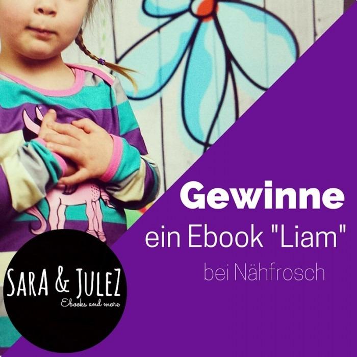 Gewinneein Ebook -Liam-