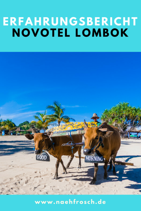 ErfahrungsberichtNovotel Lombok