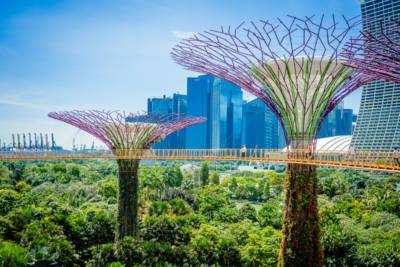 Gardens By The Bay Singapur 037