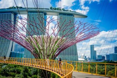 Gardens By The Bay Singapur 038
