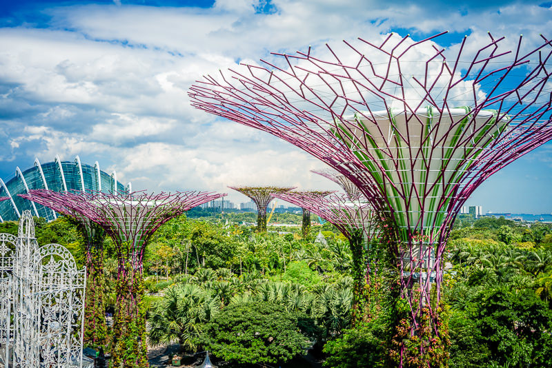 Gardens By The Bay Singapur 042