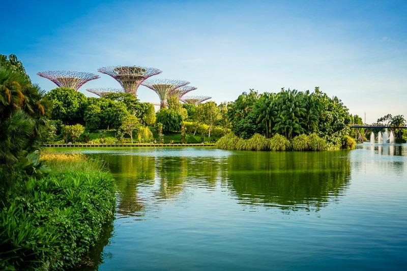 Gardens By The Bay Singapur 107