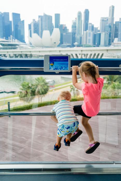 Singapore Flyer 031