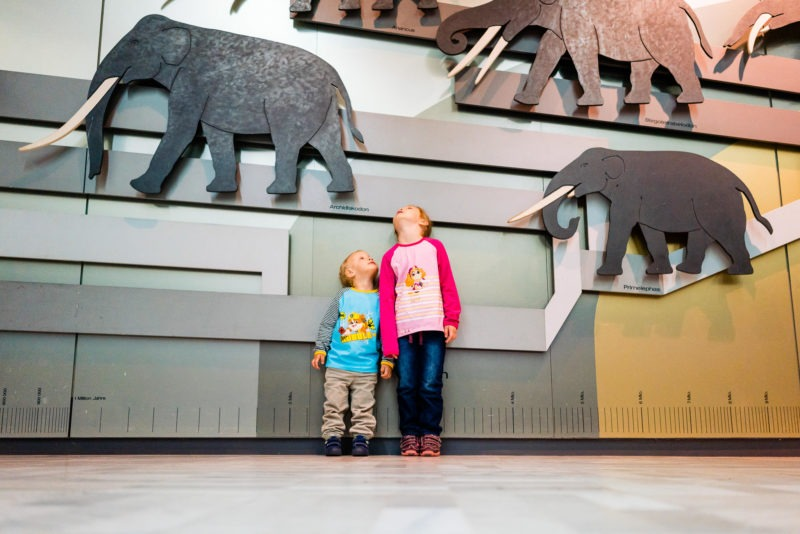 Senckenberg Museum mit Kindern 079