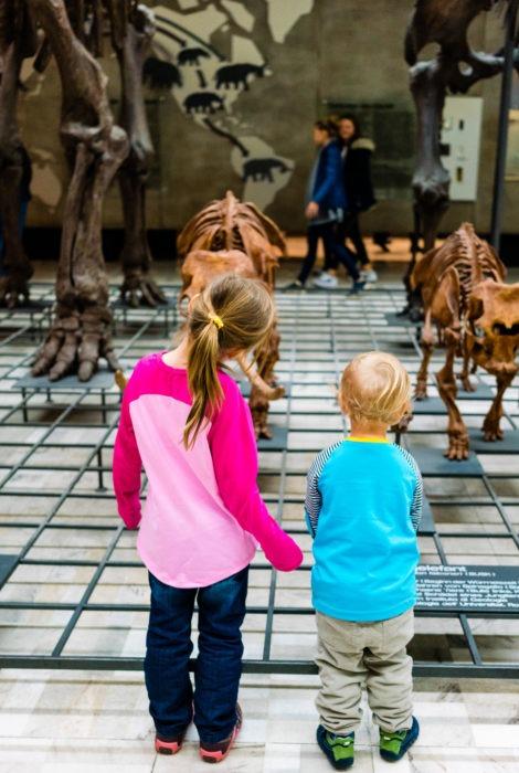 Senckenberg Museum mit Kindern 084