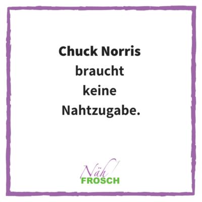 Naehfrosch-ChuckNorris-1