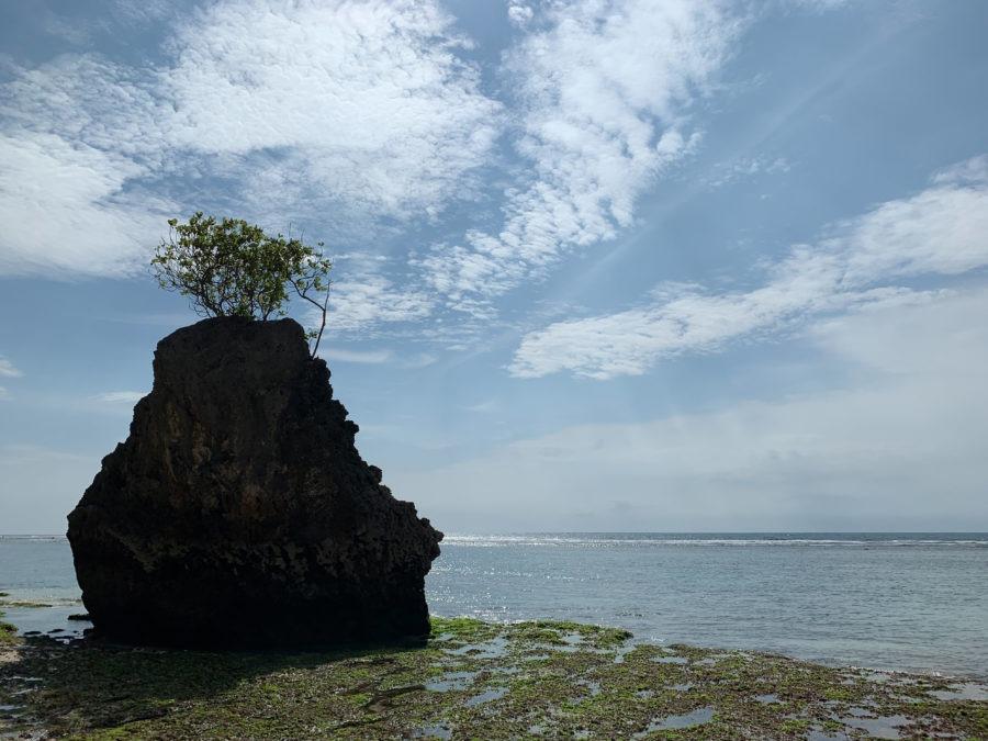 Nanggu Before