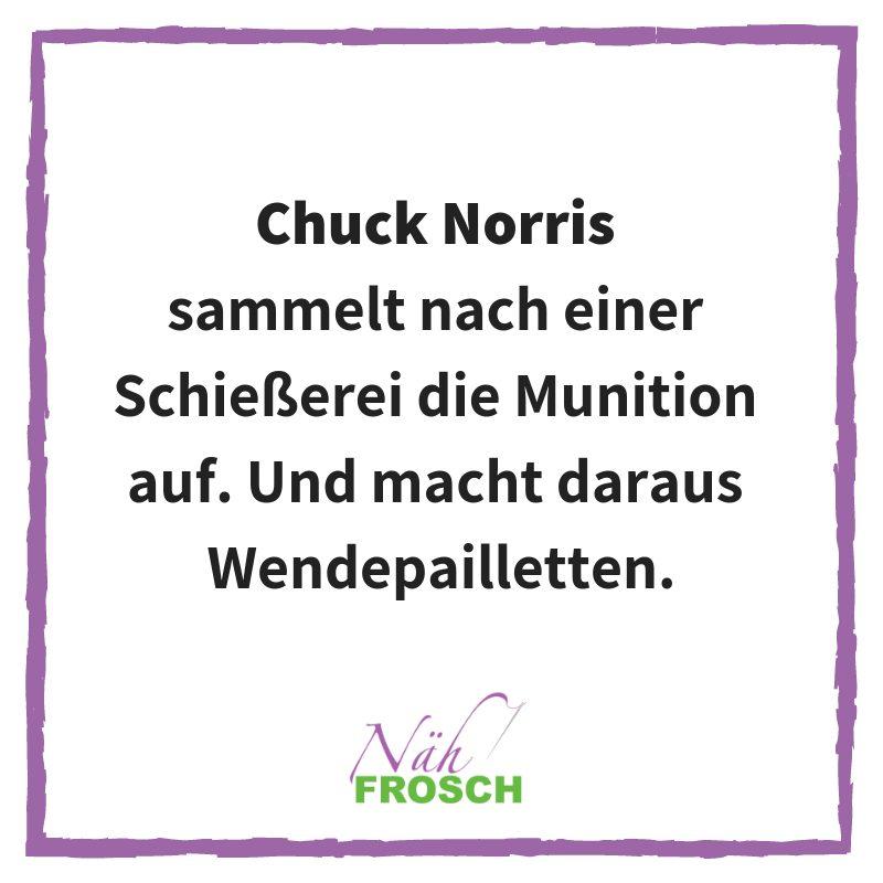 Naehfrosch-ChuckNorris-11