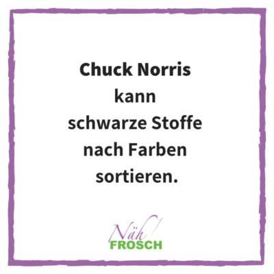 Naehfrosch-ChuckNorris-12