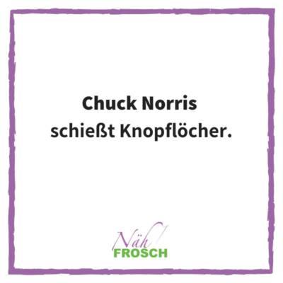 Naehfrosch-ChuckNorris-2
