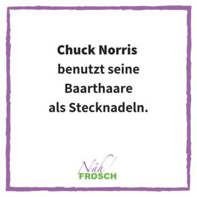 Naehfrosch-ChuckNorris-3