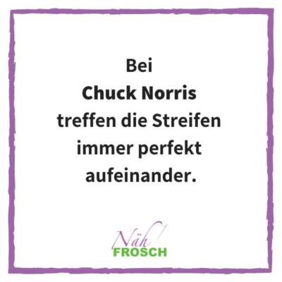 Naehfrosch-ChuckNorris-4