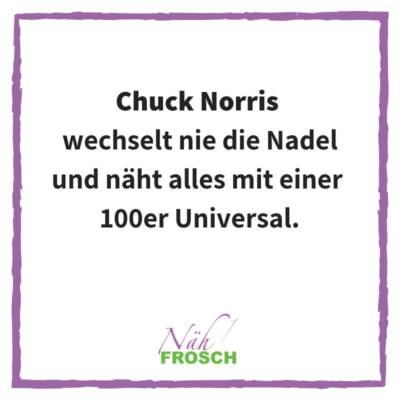 Naehfrosch-ChuckNorris-5