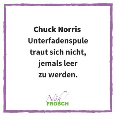 Naehfrosch-ChuckNorris-6