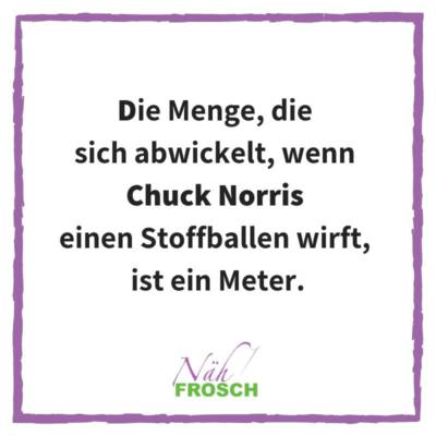 Naehfrosch-ChuckNorris-7