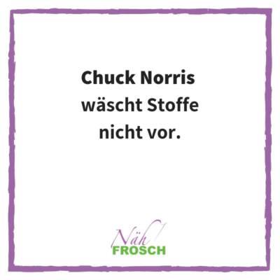 Naehfrosch-ChuckNorris-8