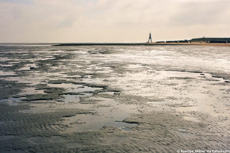Nordsee Strände: Wattenmeer in Duhnen Cuxhaven
