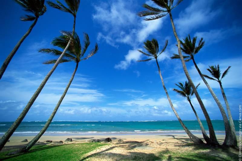 Wohin in den Urlaub